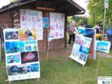 Il progetto No-Waste alla scuola Rodari