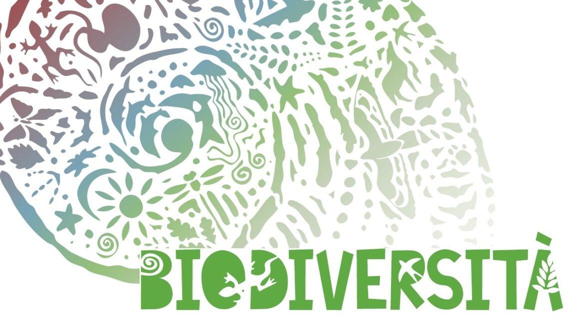"""Sezione """"Biodiversità"""""""